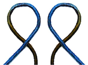 Two simple loops, one crossed to the right, one to the left.